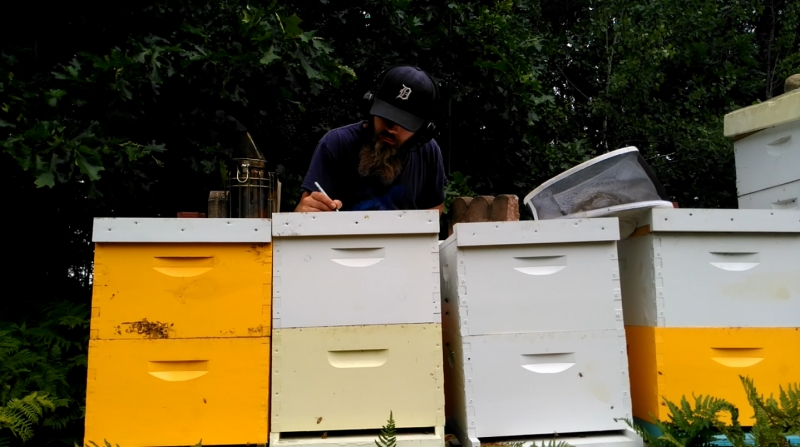 Brett Working Some Hives